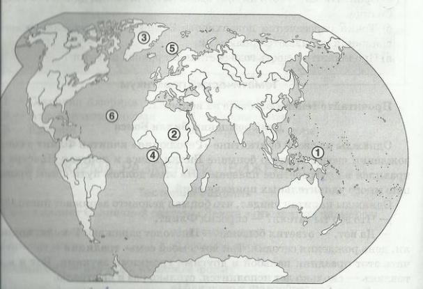 Параграф 4. Форма, размеры и движение Земли
