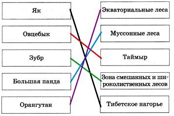 Параграф 53. Разнообразие природы Евразии.