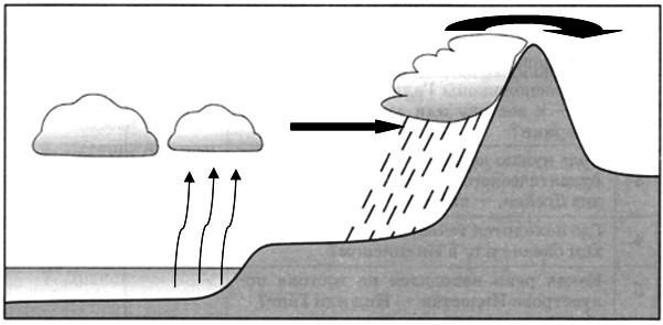 Параграф 9. Климатообразующие факторы.