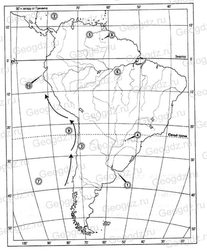 Параграф 39. Разнообразие природы Южной Америки.