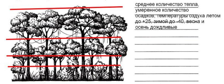 Урок 28. Жизнь в тропическом поясе (§21)